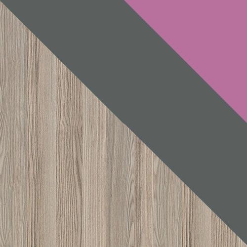 popel coinbra tmavý / antracit + fialová